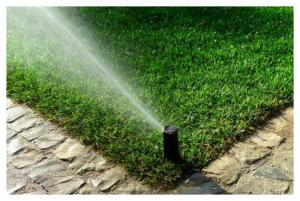 our Albany sprinkler repair team does lawn maintenance