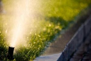 Berkeley Irrigation Repair fixes your coverage issues